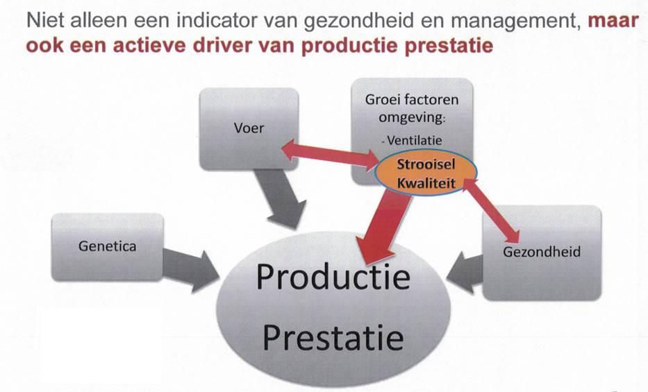 product-presentatie